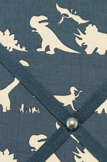 Blue Dino Picture Board