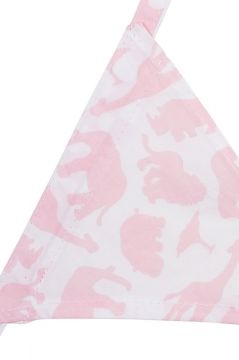 Safari Pink Bunting