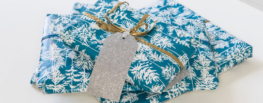 Em&Lu Free Gift Wrap